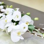 赤目柳と胡蝶蘭